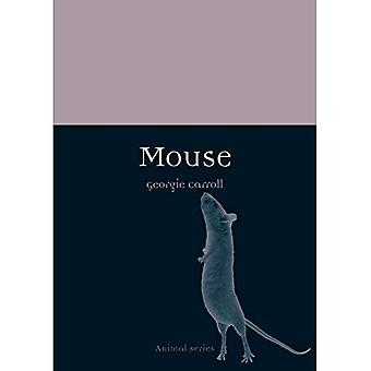 Mouse (Animal)