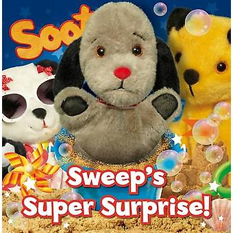 Sweep's Super Surprise by Angie Hicks - 9781782701774 Book