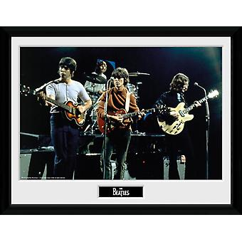 The Beatles Live indrammet Collector Print 40x30cm