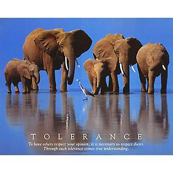 Affisch-Studio B-24x36 tolerans Wall Art CJ1267