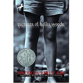 Pictures of Hollis Woods by Patricia Reilly Giff - 9780440415787 Book
