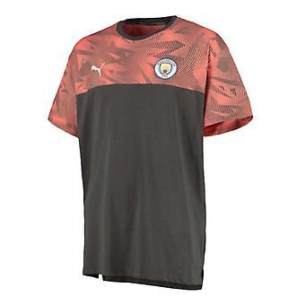 2019-2020 Manchester City Puma Casuals tee (mørk grå)