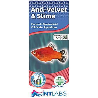 Ntlabs Antiparasite (Fish , Maintenance , Water Maintenance)