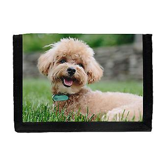 Poodle Puppy Wallet