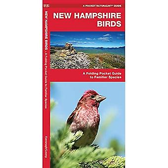 New Hampshire Birds (Pocket Naturalist)