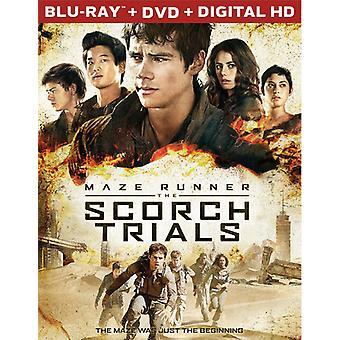 Maze Runner: Paahtaa tutkimuksissa [Blu-ray] USA tuonti