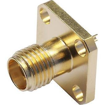 Telegärtner J01151A0811 J01151A0811 SMA موصل كم المقبس 50 Ω 1 pc(s)