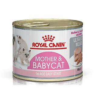 Royal Canin  Mother & Babycat (Cats , Cat Food , Wet Food)