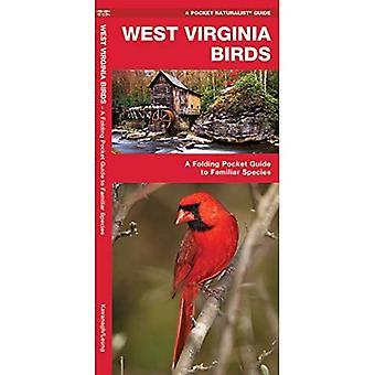 West Virginia Birds: An Introduction to Familiar Species