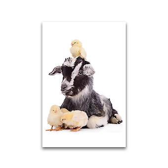 Baby Goat Met Cute Chicks Poster -Afbeelding door Shutterstock