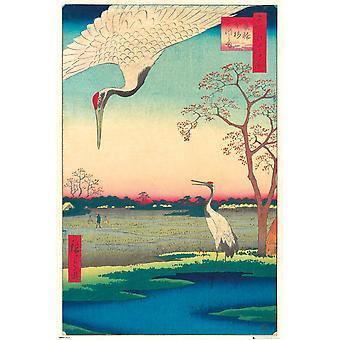 Hiroshige Kanasugi at Mikawashima Maxi Poster
