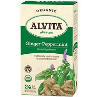 Alvita Teas Organic Ginger-Peppermint Tea, 24 Sacs
