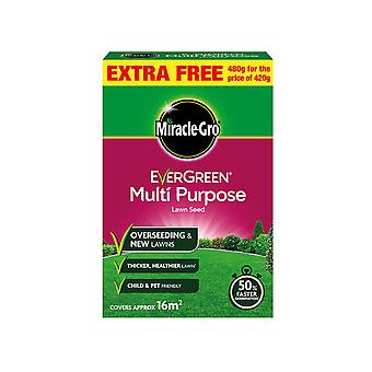Miracle Miracle Gro Evergreen Multipurpose Lawn Seed 480g 119613