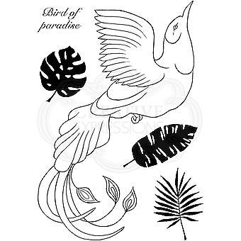 Woodware Clear Singles Paradise Bird 4 in x 6 in Stamp