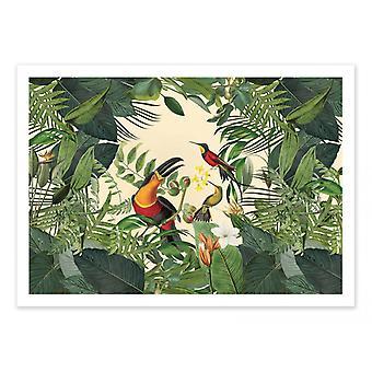 Plakat artystyczny - Tropikalna Dżungla Toucan - Andrea Haase
