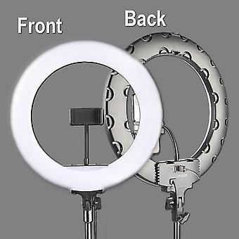 36Cm live lamp with loop bracket led lamp