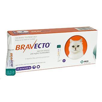 Bravecto 250mg Spot-On oplossing voor middelgrote katten 2.8-6,25 kg (6-14 lbs)