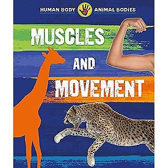 Menselijk lichaam, dierlijke organen: De spieren en de beweging (menselijk lichaam, dierlijke organen)