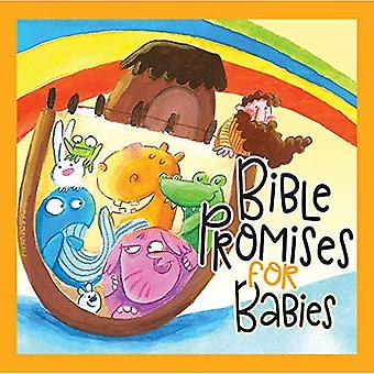 Bible Promises for Babies [Board book]