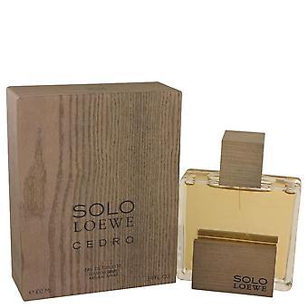 Solo loewe cedro eau de toilette spray by loewe 537594 100 ml