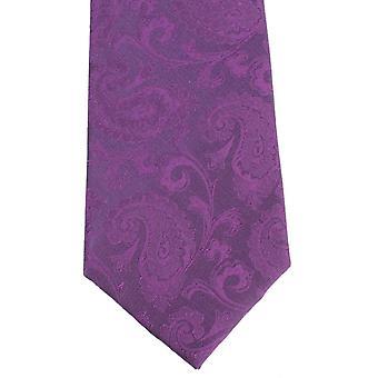 David Van Hagen Large Paisley Tie - Purple