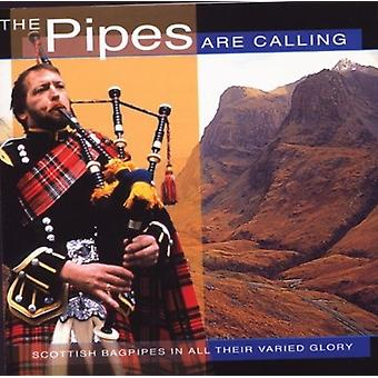 Various Artist - Pipes Are Calling [CD] USA import