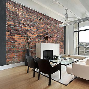Fototapetti - Vintage Wall (Red Brick)