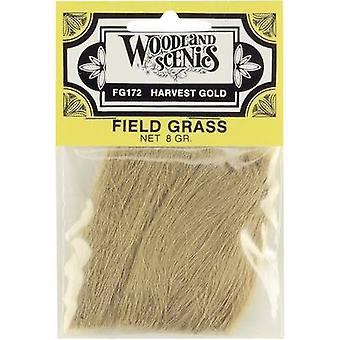 Bosrijke Scenics WFG172 grasland oogst goud