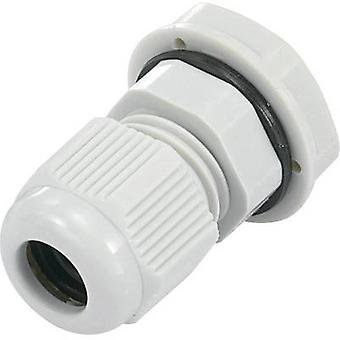 KSS EGRWW13.5GY4 Cable gland PG13.5 Polyamide Grey-white (RAL 7035) 1 pc(s)