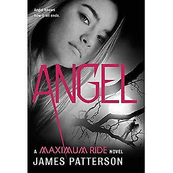 Angel: en maximal rida roman