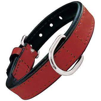 Creaciones Gloria Collar Piel Acolchado (Dogs , Collars, Leads and Harnesses , Collars)