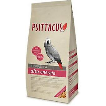 Psittacus Maintenance Feed High Energy (Birds , Bird Food)