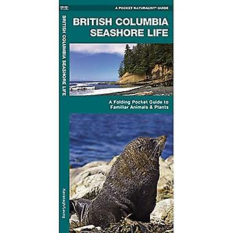 British Columbia Seashore Life: An Introduction to Familiar Plants and Animals