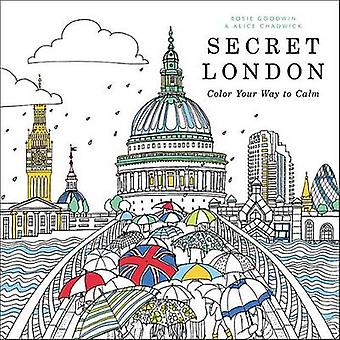 Secret London - Color Your Way to Calm - 9780316546102 Book