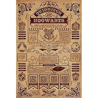 هاري بوتر ملصق هوجورتس كويديتش 173