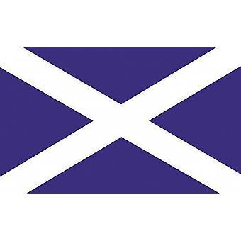 Large Scotland Flag 8ft x 5ft - Saltire - St Andrew