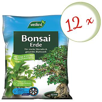 Spar: 12 x WESTLAND® Bonsai Earth, 4 liter