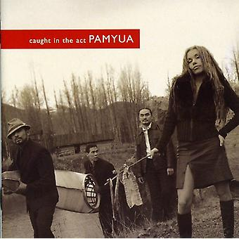 Pamyua - Caught in the Act [CD] USA import