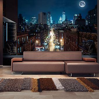 Fotomural - Sleepy New York