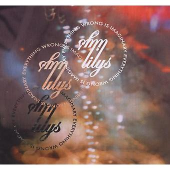 Lilys - Everything Wrong Is Imaginary [CD] USA import