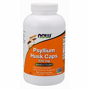 """עכשיו ממזון Psyllium Husk, 500 מ""""ג, 500 כמוסות"""