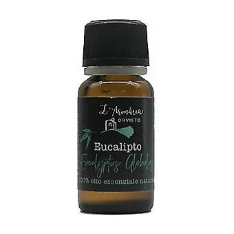 Essential oil of Eucalyptus globulus 10 ml