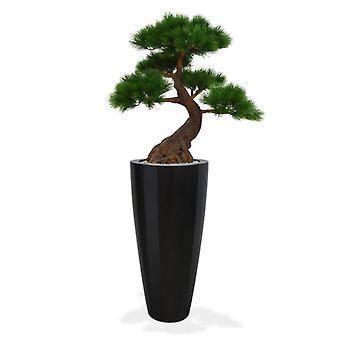 Kunstigt UV-bevis Pinus Bonsai Tree x5 Deluxe 80 cm på basen