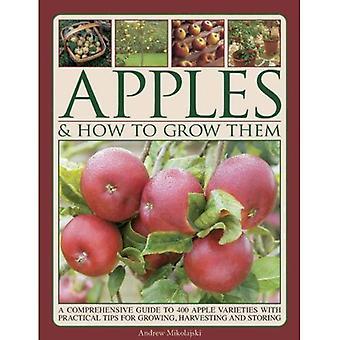 Appels & hoe ze groeien: A Comprehensive Guide to 400 Apple rassen met praktische Tips voor de teelt, oogst...