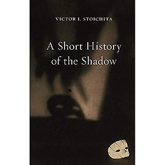 Une brève histoire de l'ombre