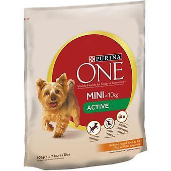 Pro Plan Pienso Mini Dog Active Pollo y Arroz (Dogs , Dog Food , Dry Food)