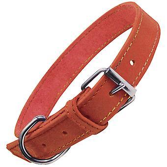 Gloria Pets Collar Oasis (Honden , Halsbanden en Riemen , Halsbanden)