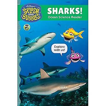 Splash i pęcherzyki: rekiny!