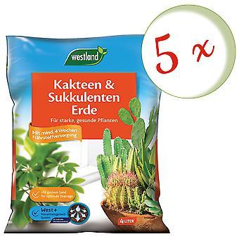 Sparset: 5 x WESTLAND® kaktukset ja mehevä maa, 4 litraa