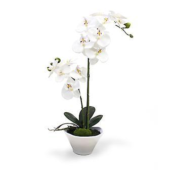 Keinotekoinen Phalaenopsis Orkidea 50cm x2 keraamisessa kulhossa
